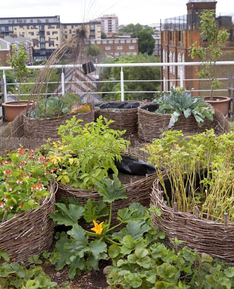 Woonblog terras balkon moestuin 03