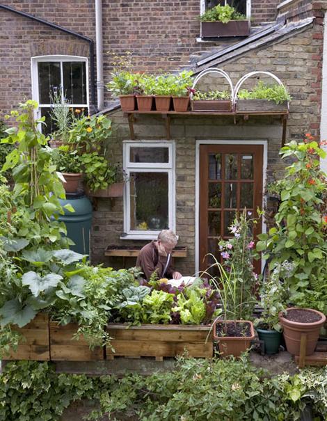 Tuinieren zonder tuin woonblog - Idee decoratie terras ...