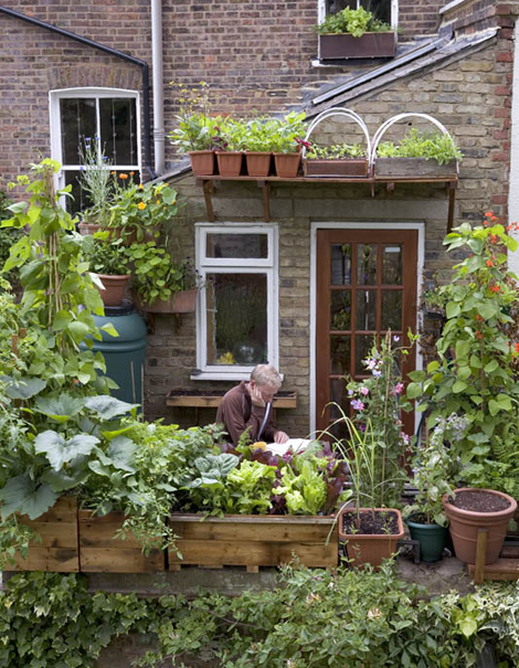 Tuinieren zonder tuin woonblog - Idee terras ...
