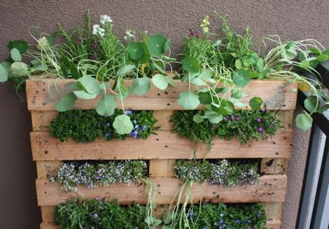 Tuinieren zonder tuin   woonblog