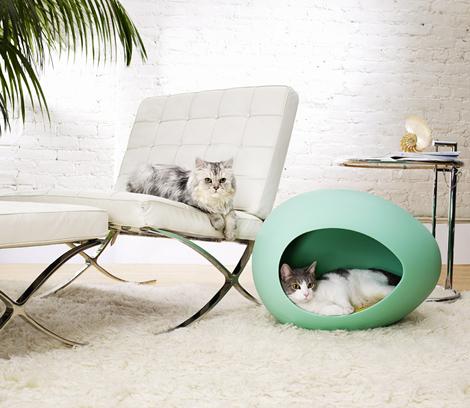 Woonblog katten mand 01