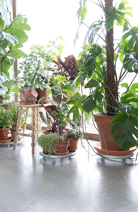 Binnenkijken in een groen huis vol vrolijk design in Wachtebeke ...