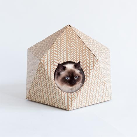 Woonblog-catcube-12