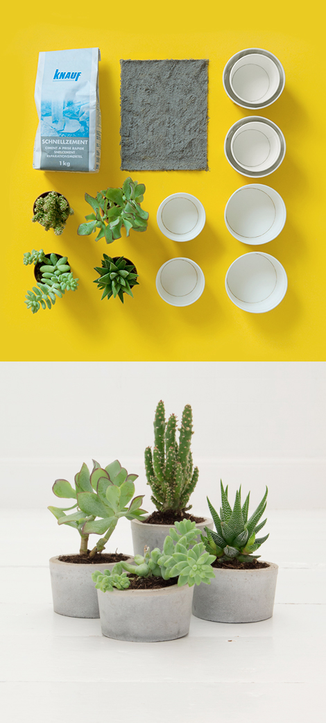 Cement-plant-pots-diy