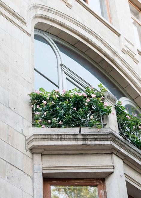 Planten-balkon-terras-stad-groen-01