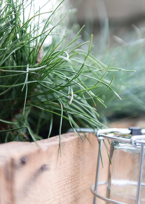Planten-tuin-terras-balkon-stad-groen-19