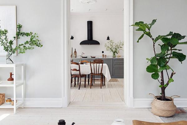 Scandinavisch-interieur-keuken-01