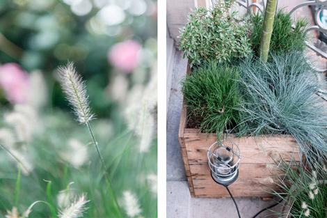 Planten-balkon-tuin-terras-stad-groen-09